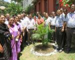 Plantation Programme by Officers and Staff1