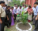 Plantation Programme by Officers and Staff2